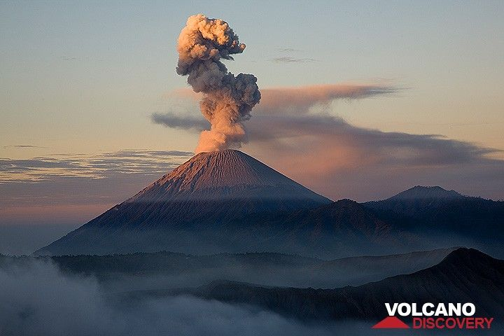 Ash eruption at Semeru in early light (Photo: Tom Pfeiffer)