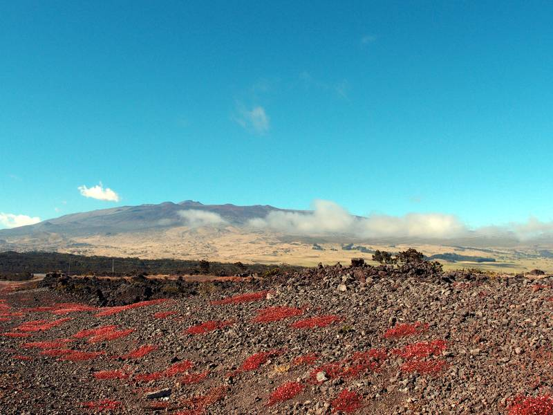 Mauna Kea volcano, partly in clouds, Big Island, Hawaii (Photo: Janka)