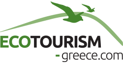 Experience Greece differently - take an eco-friendly trip that's off the beaten path!